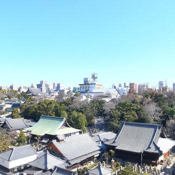 眺望は道路をはさんで目の前にある、大きなお寺!空も木々もあって気持ちいい!