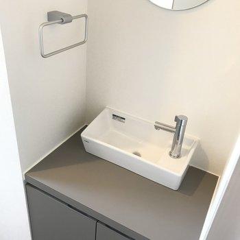 なんと独立の手洗いスペース付き。なんかお店みたいな雰囲気です。
