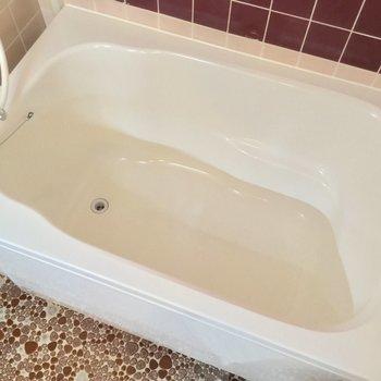 浴槽が大きいので、ここで身体を洗おうかな?