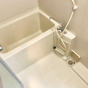 お風呂は普通くらいの広さかな。※写真は前回募集時のものです