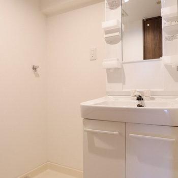 脱衣所には洗面台と洗濯機置場が。