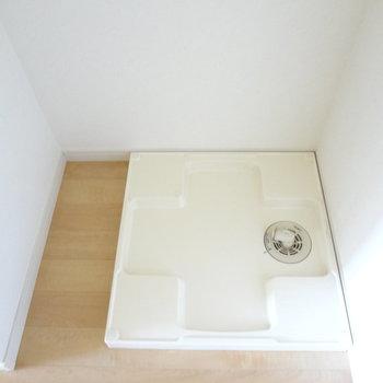 洗濯パンもありますよ。※写真は別室の間取りが違う部分がございます