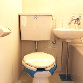 トイレはどう飾ろうかな。