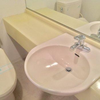 少しコンパクトな空間ですが洗面台が立派なので許しちゃう
