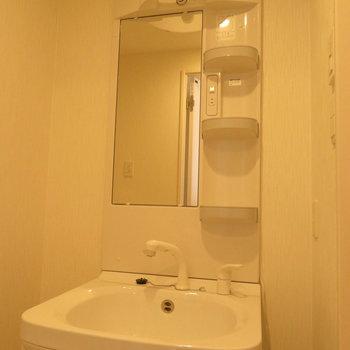 収納は抜群の洗面台※写真は同間取り別部屋のものです。