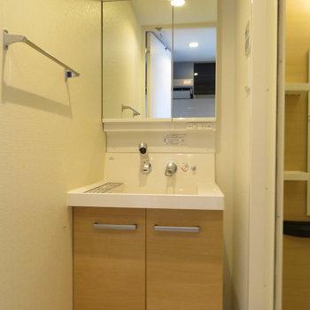 前面鏡のような中には収納のある洗面台