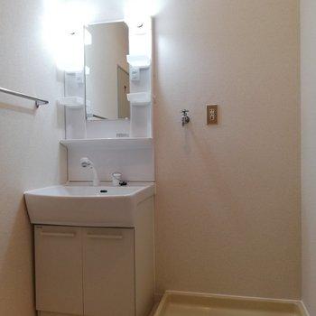 洗面所には、たくさんアメニティが置けそう※写真は2階の同間取り別部屋のものです