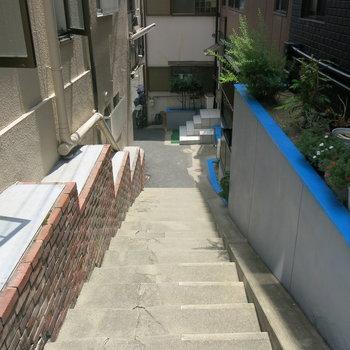 東側の階段をくだったところ!