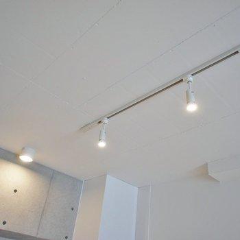 照明はラインティングレール。※写真は404号室のもの