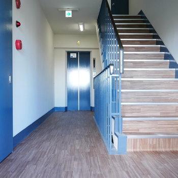 階段とエレベーターも外観に合わせたブルーです