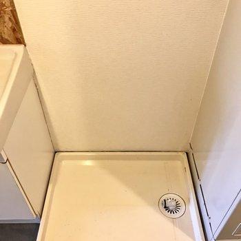 洗濯機も脱衣スペースにまとまってます。