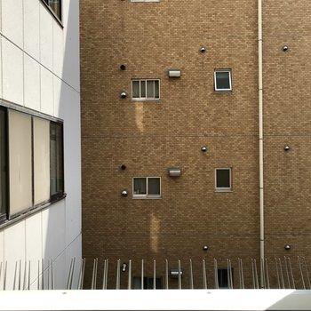 窓からも隣接するビルが見えます。
