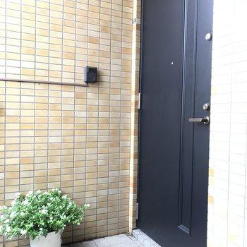 玄関扉と植木鉢
