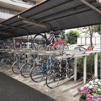 自転車置場もたくさん置ける
