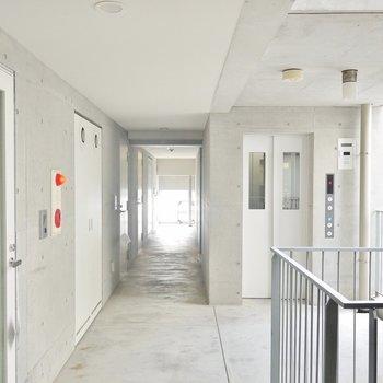 共有廊下もシック。