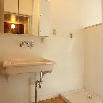 洗面台の下は猫用トイレ置き場に ※同間取りの別棟別部屋のものです
