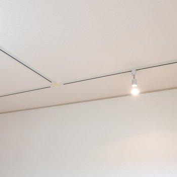 天井には、ライティングレールもついてます。