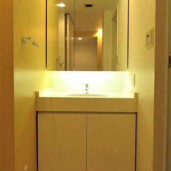 大きな鏡で身だしなみにもぬかりなく!※写真は同間取り別部屋のものです。