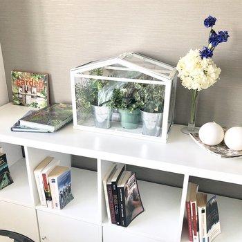 観葉植物を置いて癒しに。参考になります!!※写真はモデルルーム・6階の同間取り別部屋のものです