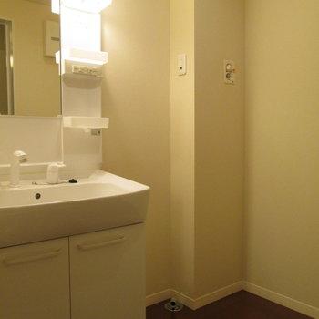 1階部分に洗面台と洗濯機置き場があります。