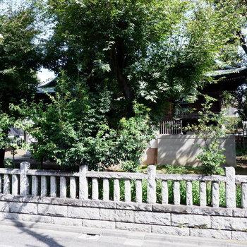 細長の窓からは向かいの神社が。