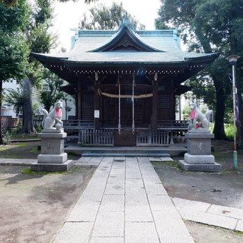 向かいの神社です。緑豊か。