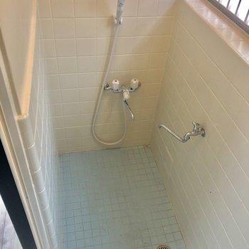 タイルが可愛いシャワールーム。※写真は前回募集時のものです