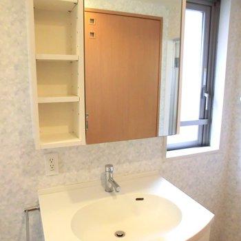 右隣りに洗濯機をおきます。※写真は2階別部屋の同間取りのもの