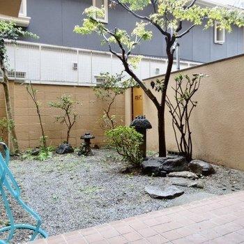 にしてもこのお庭、いいよね(※写真は清掃前のものです)