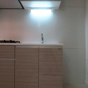 冷蔵庫置場はキッチンの横にあります。写真は1階の同間取り別部屋