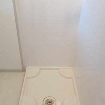 洗濯パンも脱衣スペースにありますよ。