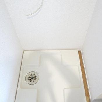 洗濯機はこちらへ〜