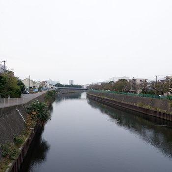 家の直ぐ側を川が流れます。