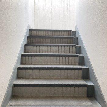 階段を使いますが、そこまで段数は多くありませんでしたよ〜