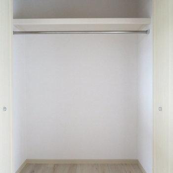 クローゼットと和室に押し入れがあります