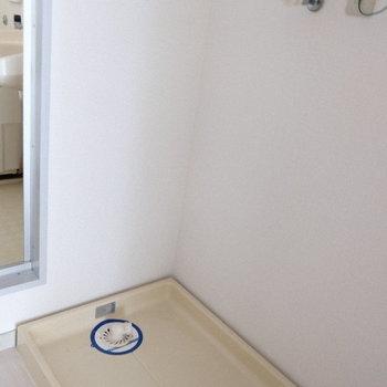 洗濯パンは脱衣所にあります。