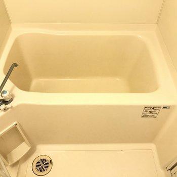 お風呂は一人で入るには十分そうです。