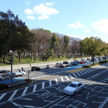 伏見通りを挟んで向かい側に白川公園。緑のある環境もgood!!