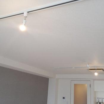 天井にはカスタム可能なライティングレールも!