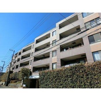 CITY WINDS 横浜 PARK VISTA