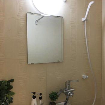 鏡ももちろん付いてます
