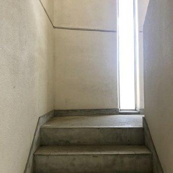 この階段をのぼって2階まで!