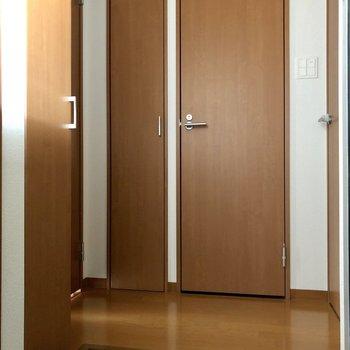 廊下にはドアがたくさんありますね