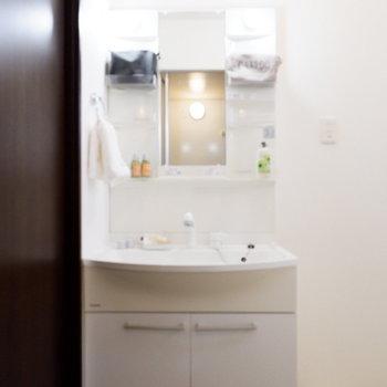 コンセント付きの独立洗面台です。※家具はサンプルです