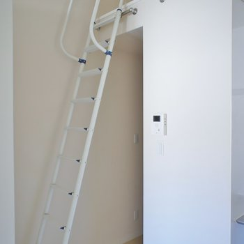 こちらの梯子を使います※写真は前回募集時のもの