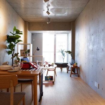 打ちっぱなしのコンクリートにライティングレールが雰囲気を出してくれます◎※写真は5階の同間取り別部屋のものです。