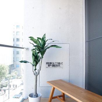 バルコニーも開放的!※写真は5階の同間取り別部屋のものです。