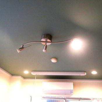 天井も照明もいい感じ◎