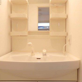 収納部が多い洗面台。(※写真は10階の同間取り、別部屋のものです)