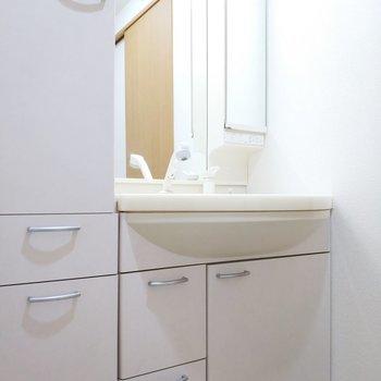収納もたくさん、リッチな鏡面、独立洗面台の王様!※写真は2階の同間取り別部屋のものです